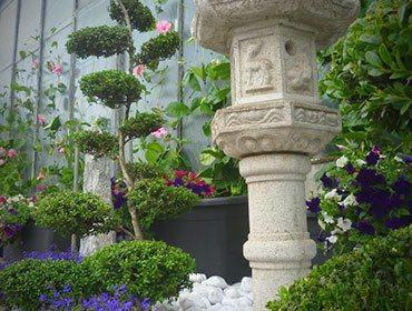 Noleggio piante roma per stand congressi fiere meeting aziende - Piante per giardino giapponese ...